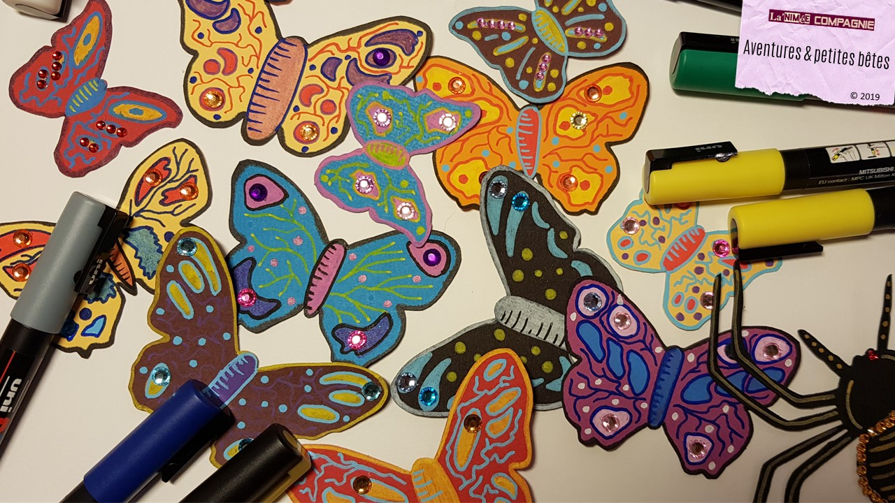 """Les papillons """"Aventures & petites bêtes"""""""